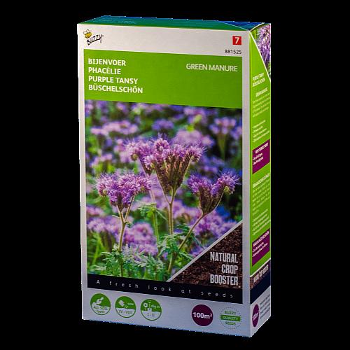 Bijenvoer/Phacelia (Phacelia tanacetifolia Buzzy Green Manure