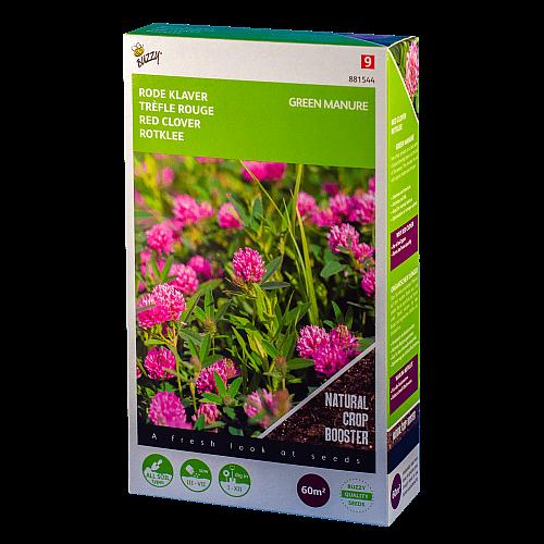 Rode klaver (Trifolium pratense) Buzzy Green Manure
