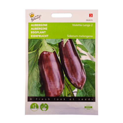Aubergine Buzzy Seeds
