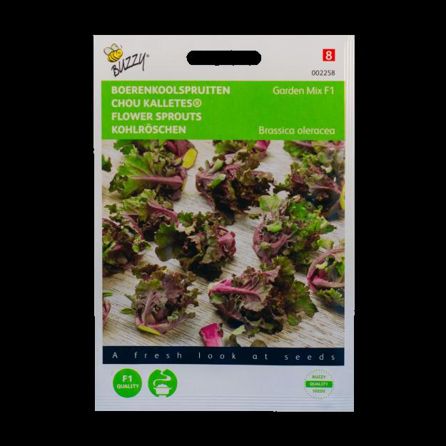 Boerenkoolspruitjes (Garden Mix F1) Buzzy Seeds