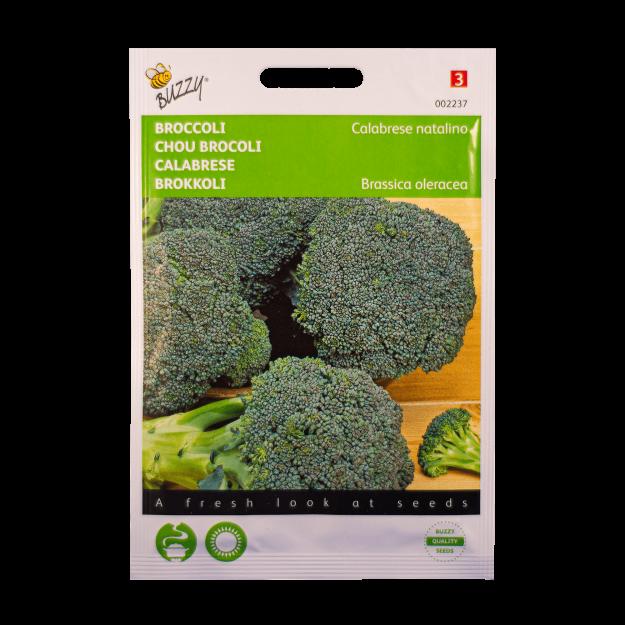 Broccoli Buzzy Seeds
