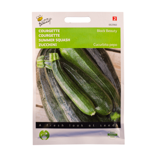 Courgette (Black Beauty) Buzzy Seeds