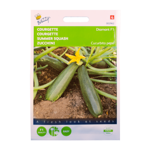 Courgette (Diamant F1) Buzzy Seeds