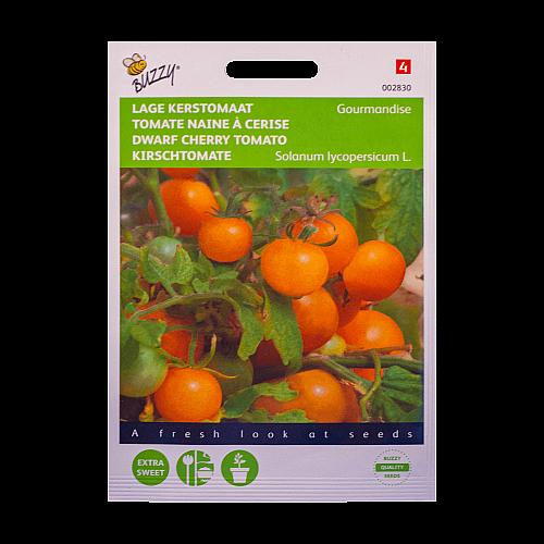 Kerstomaat (Laagblijvend / Gourmandise) Buzzy Seeds