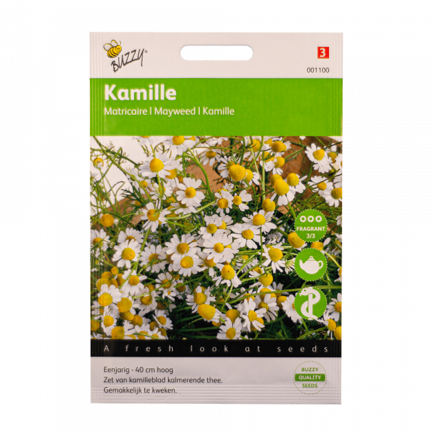Kamille Buzzy Seeds