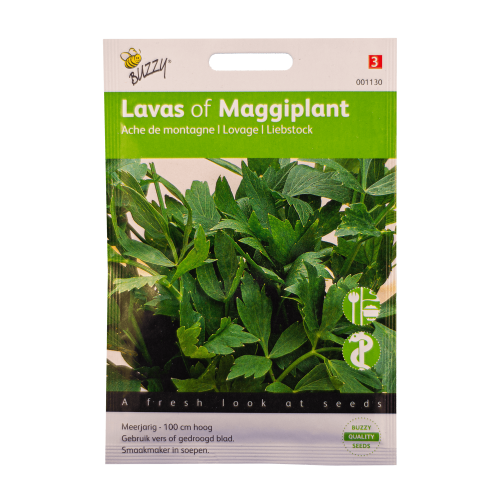 Lavas (Maggiplant) Buzzy Seeds