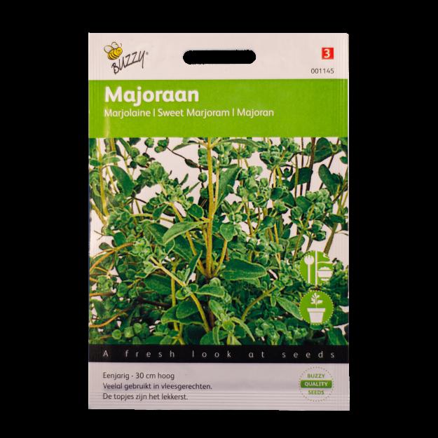 Majoraan Buzzy Seeds