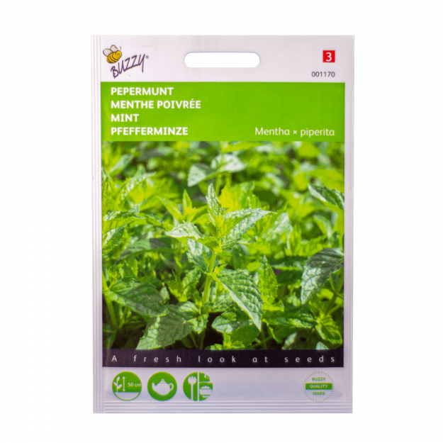 Munt (Pepermunt) Buzzy Seeds