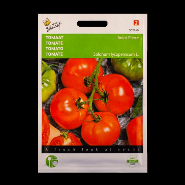 Tomaat (Saint Pierre) Buzzy Seeds