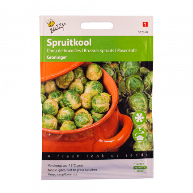 Spruitkool (Groninger) Buzzy Seeds