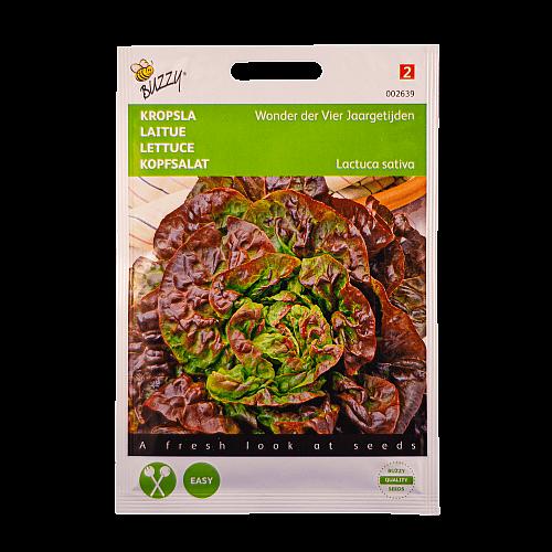 Kropsla (Wonder der Vier Jaargetijden) Buzzy Seeds