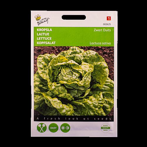 Kropsla (Zwart Duits) Buzzy Seeds