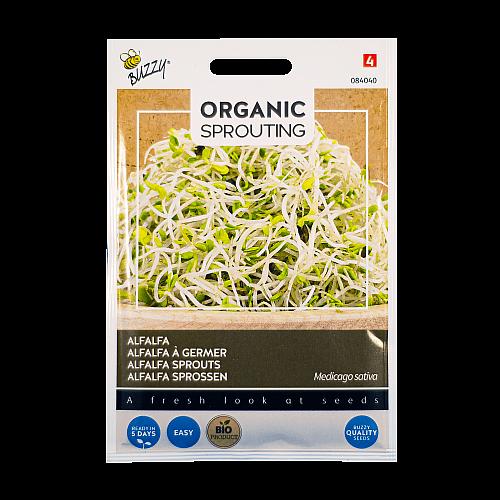 Alfalfa (Medicago sativa) Buzzy Organic Sprouting BIO
