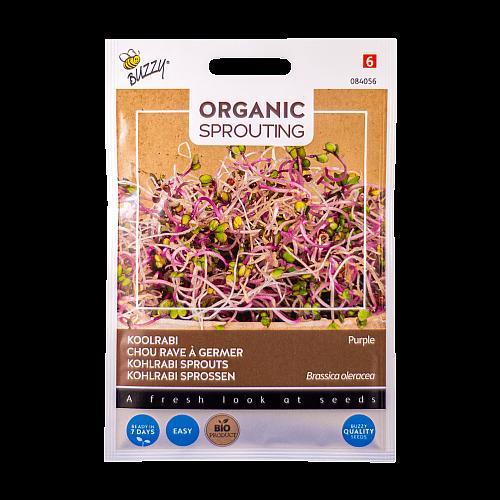 Koolrabi (Paarse / Brassica oleracea) Buzzy Organic Sprouting BIO